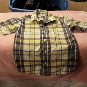 Button up short sleeve